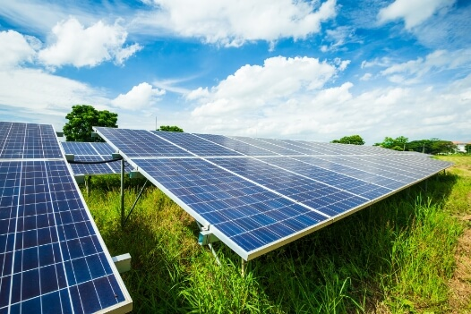 Solar Branche